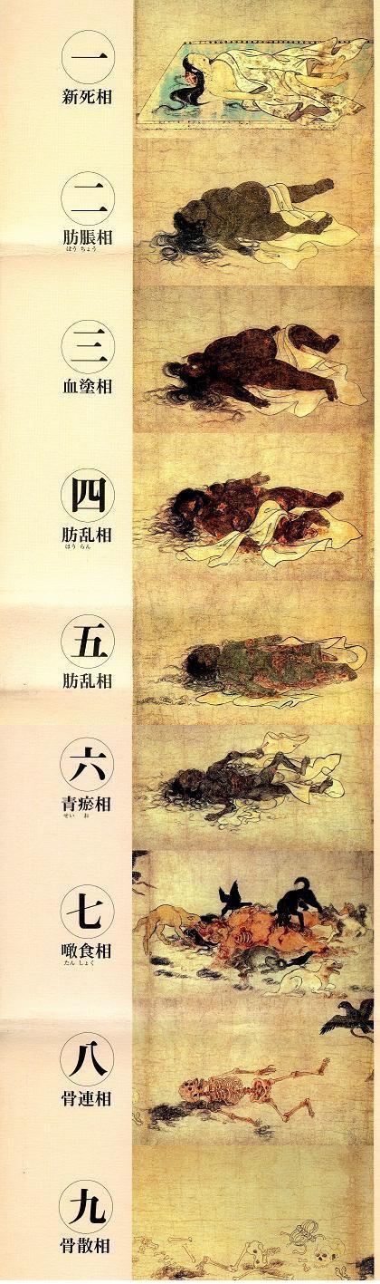 【戒友网】3.不净观图片系列